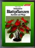 Dekorative Blattpflanzen